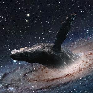 ashira-3-space-whale