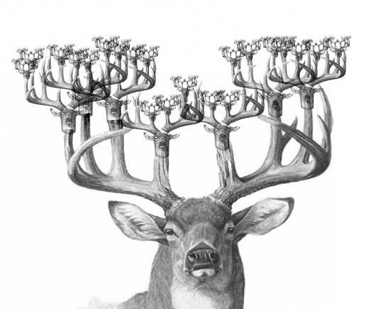 drawn-fractal-deer-536882-4069818