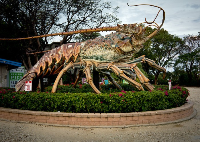 giant-lobster